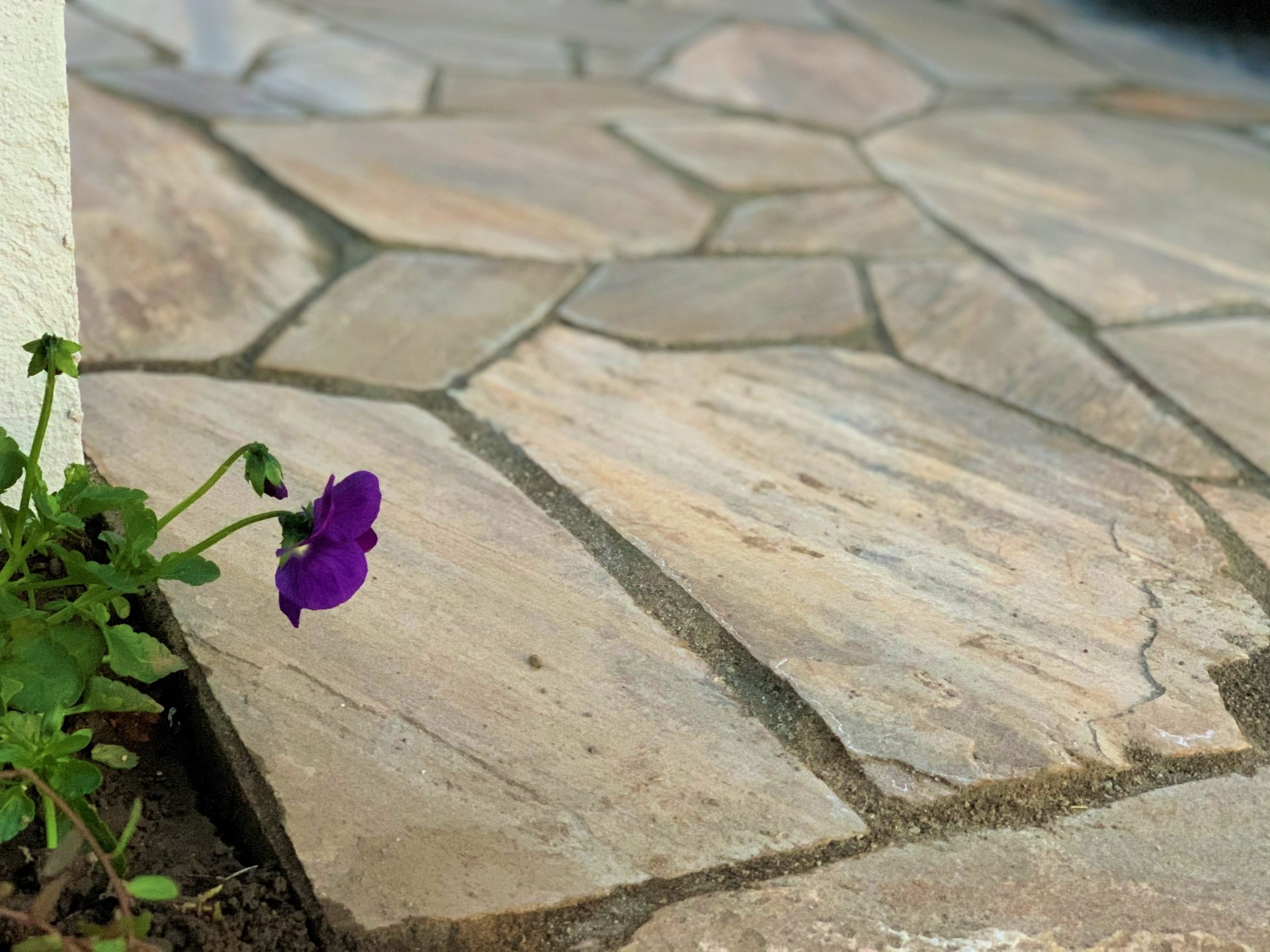 天然乱形石